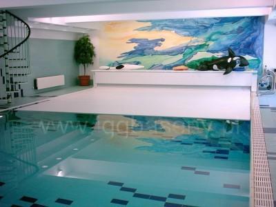 basen wewnątrz drabinka delfin