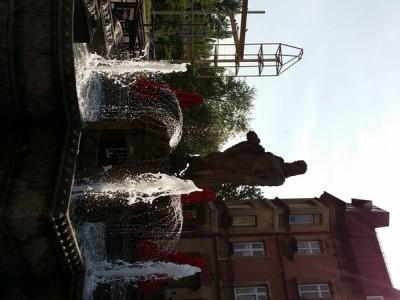 baseny publiczne 10